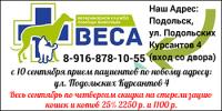 vesa_350x175